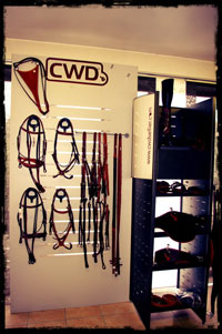 Sellerie CWD